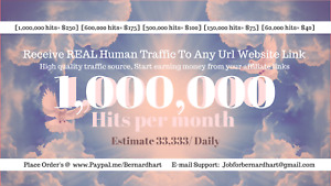 1 000 000 View Hits To Any Url Website Including Adult Sites Every 30 Days