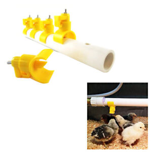 10 Chicken Poultry Automatic Water Drinking Nipple Feeder Cups Nipples
