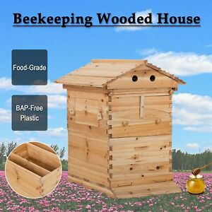 Hive Frame bee For Beekeeping Beehive Natural Wooden Beekeeping House Box New