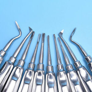 10 Pcs set Dental Stainless Steel Root Elevator Instruments Autoclavable