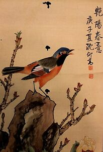 Chinese Painting Of Colorful Bird On Silk And Paper