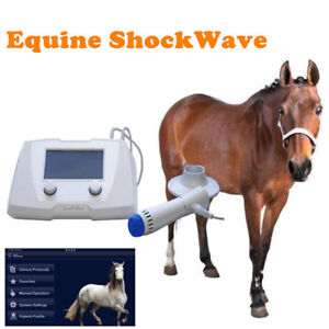 Km63 Smartwave Portable Equine Veterinary Shock Wave Therapy Equipment For Horse