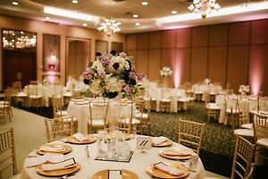 Gold Resin Chiavari Chairs Commercial Quality Stackable Wedding Chairs