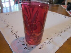 Antique Cranberry Etched Drinking Glass