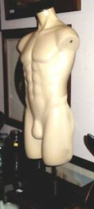Male Mannequin W stand Full Torso Large Fiberglass Body W adjustable Height