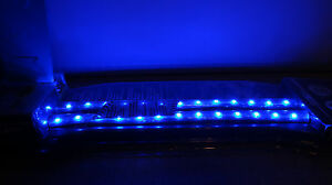 Alpena Rugged Led Strip Lights 24 Blue Free Shipping
