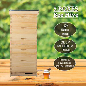 5 Brood Boxes10 frame Size Hive Frame bee Hive Frame beehive For Beekeeping