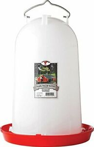Little Giant 3 Gallon Poultry Waterer 7906 3 Gal White new