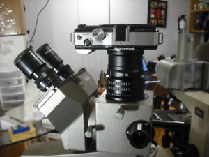 Olympus Szx Microscope 2 Olympus M4 3s Camera Adapter W M42mm Dovetail 16 12 10