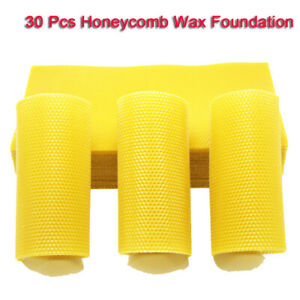 30pcs Honeycomb Foundation Honey Hive Equipment Bee Honey Sheets Tool Supplies