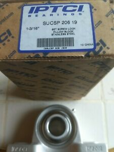 Iptci 2 Bolt Pillow Block Bearing Sucsp 206 19 1 3 16 Stainless Steel