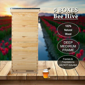 10 frame Size Langstroth Beekeeping Bee Hive Frame beehive Kits W queen Excluder