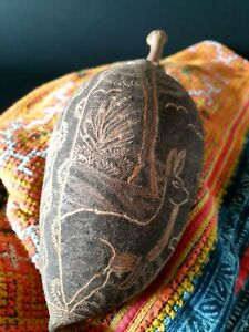 Old Australian Aboriginal Carved Kimberley Boab Nut Beautiful Collection Item