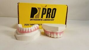 Vintage Dental Orthodontic Plaster Teeth Retainer Model Upper Lower Display