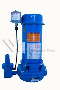 Goulds Vj10 1 Hp Vertical Deep Water Well Jet Pump 1 Stage 1ph