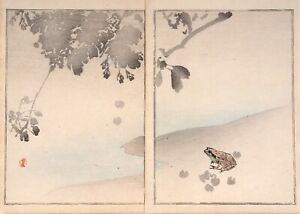 Authentic 19th Century Watanabe Seitei Shotei Woodblock Print Exquisite Rare