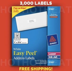 1 Box Of 3000 Avery 5160 6240 8460 Address Mailing Shipping Labels 1 X 2 5 8