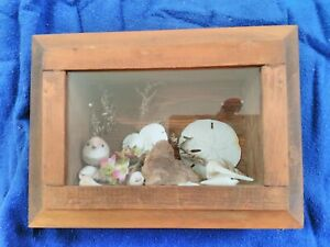 Antique Wood Shadow Box Frame With Shells And Bird