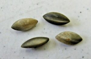 4 Antique Mop Mother Of Pearl Marquis Shape Metal Shank Buttons
