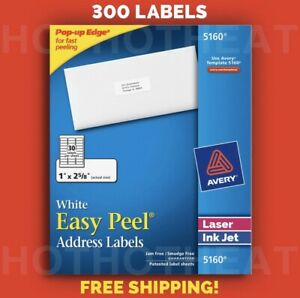 300 Avery 5160 6240 8160 5960 5260 Address Mailing Shipping Labels 1 X 2 5 8