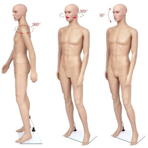 Male Body Model Plastic Mannequin Full Body Clothes Display Stand Life size New