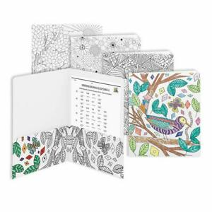 Lot Of 48 Smead 87951 Smead Coloring Two pocket Folder Letter Assorted Designs