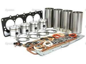 Engine Overhaul rebuild Kit For Case David Brown 1394 1490 1494 Tractor Ad4 55t