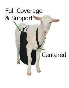 Anti Mating Anti Breeding Olor Buck Apron With Harness For Goats sheep Small