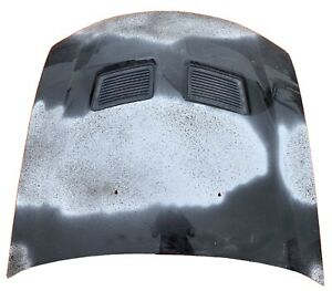 2005 2006 2007 2008 2009 Ford Mustang Cobra Hood Oem Reconditioned