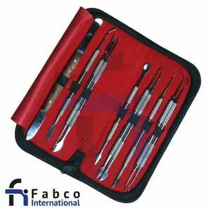 Wax Carving Tool Set Of 10pcs Dental Lab Instruments Stainless Steel