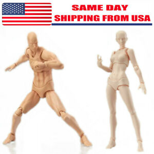 S.H.Figuarts Figma CHAN amp; KUN Male Female PVC Movable Figure Body Model Toy Hold $12.49