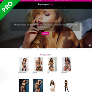 Sexy Lingerie Shop Dropship Store Turnkey Dropship Website startup Business