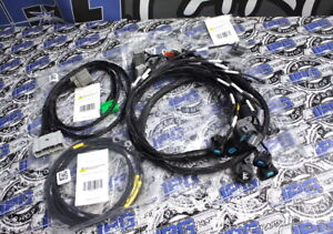 Rywire B Series Obd2 Budget Engine Wiring Charge Harness 1996 1998 Honda Civic