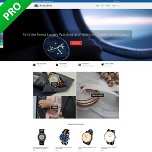 Professional Watch Dropshipping Store Dropship Turnkey Business Website