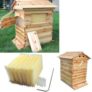 7pcs Auto Beehive Frame Comb Bee Hive Boxes For Beekeepers Food Grade Us Stock