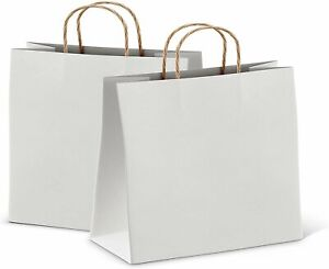 White Retail Shopping Kraft Gift Paper Bags With Handles10x5x13 Pack Of 25