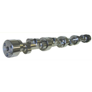 Howards Camshaft 121213 10 Solid Roller 2000 6200 For Chevy 396 454 502 Bbc