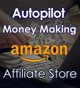 Money Making Amazon Affiliate Website Dropshipping Store 2 In 1