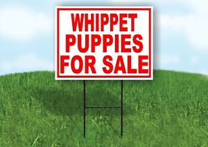Whippet Puppies For Sale Red Yard Sign Road With Stand Lawn Sign