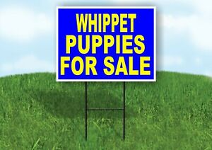 Whippet Puppies For Sale Yellow Blue Yard Sign Road With Stand Lawn Sign