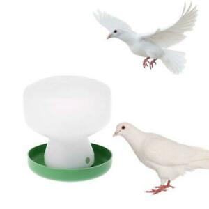 Plastic Pigeon Feeder Chicken Drinking Bird Quail Poultry Automatic Drink Water