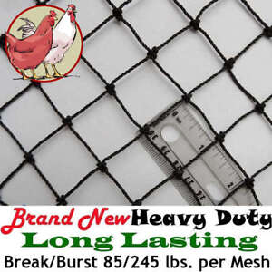 Poultry Netting 50 X 50 1 Heavy Knotted Aviary Bird Net Plant Protection Nets