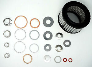 Champion Valve Repair Kit For Model R10a R15a R15b R15c R15d Fits Old New