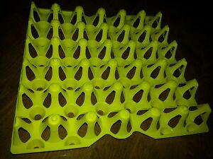 6 Chicken Egg Trays For Incubator Storage Cleaning Holds 30 Eggs Was 30