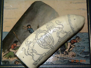 Historic Brandenburg 5 Scrimshaw Sperm Whale Tooth Resin Replica