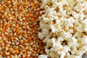 Fancy Farm Premium Theater Quality Popcorn case