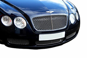 Bentley Continental Gt Lower Grille grill Set Silver Finish 2003 To 2007