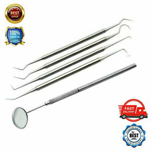 Dental Picks Mirror Tools Sculpture Instrument Double End Oral Kit set Tooth
