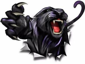 Panther Rip Vinyl Graphic Truck Race Car Go Kart Window Hood Tire Cover Decal