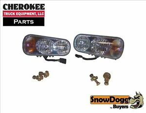 Snowdogg buyers Products 16160700 Plow Light Kit Pair